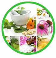 Herbs and Nutrition